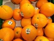 Früchte wie Orangen enthalten viel Kalzium
